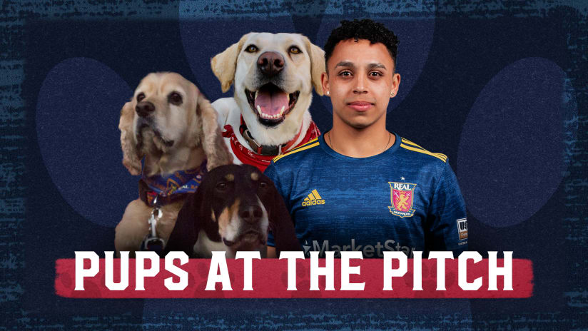 Real Monarchs Pups at the Pitch