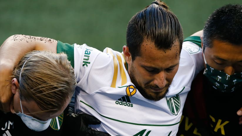 Sebastian Blanco - injury - carried off field