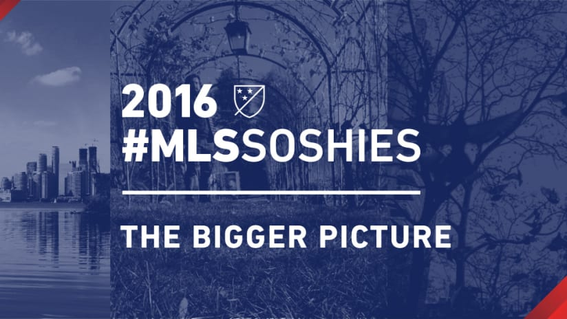 #MLSSoshies: The Bigger Picture DL image
