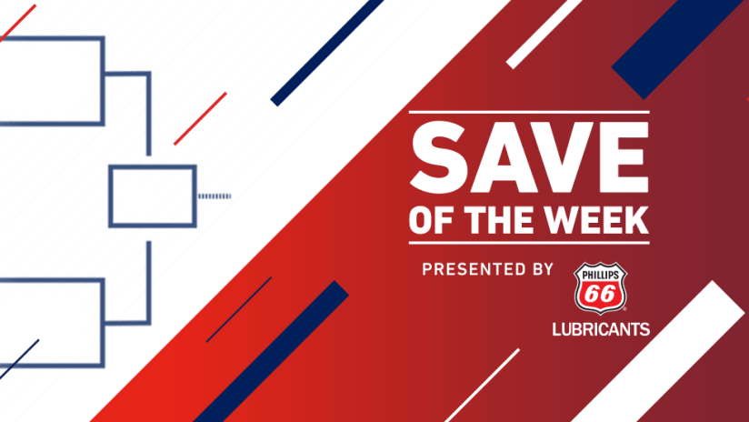 Save of the Week - 2016 - generic