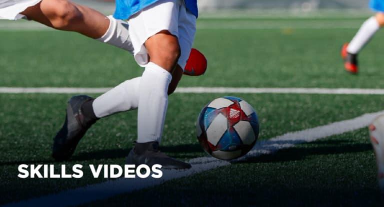 SkillsVideos-Button