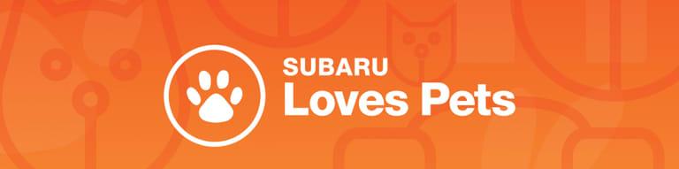 SubaruLovesPets-Bar