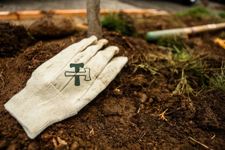 #TimbersX   Stand Together's history with Earth Day constantly works to preserve our most valuable resource -