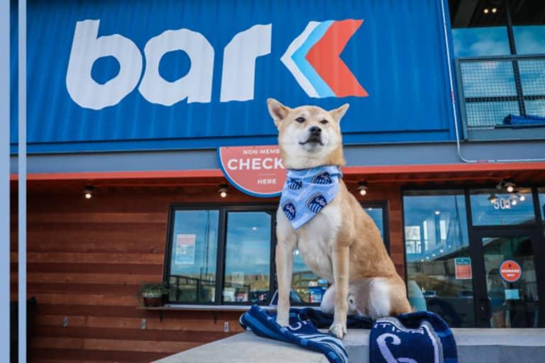 Sporting KC Dog Club at Bar K - https://kansascity-mp7static.mlsdigital.net/images/BarK_LandingPage_Header_v2_2.jpg?YeDEysfd1pK4Z0MvN4ESPN8fWWPVw1JA