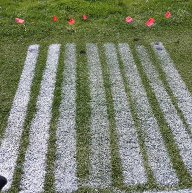 Protecting The Pitch At BMO Field  -