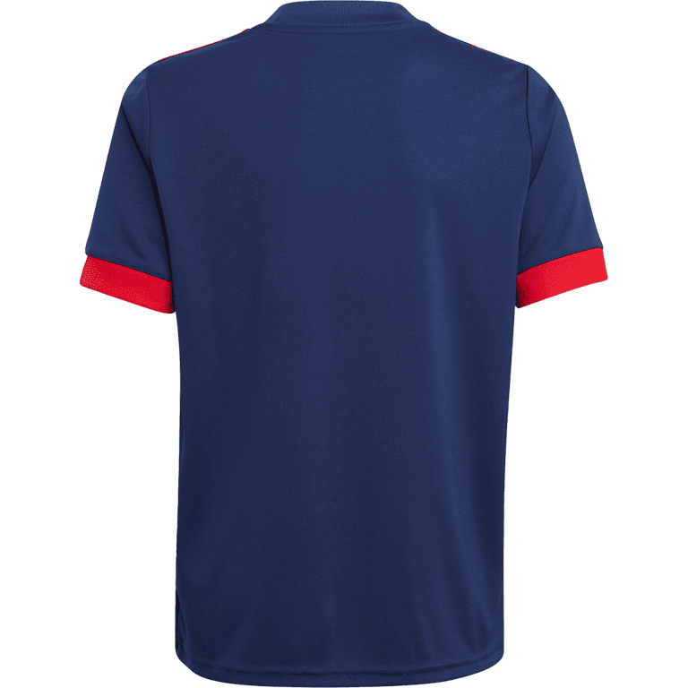 """Chicago Fire FC unveil """"Lakefront"""" 2021 primary and secondary jerseys - https://league-mp7static.mlsdigital.net/images/chi2.png"""